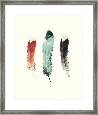 Feathers Framed Print by Amy Hamilton