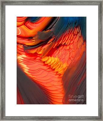 Feathers And Scales Framed Print