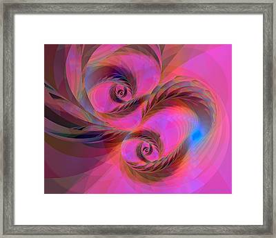 Feathers In The Wind Framed Print by Judi Suni Hall