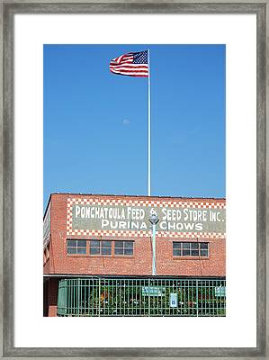 Framed Print featuring the photograph Feed Store by Charlotte Schafer