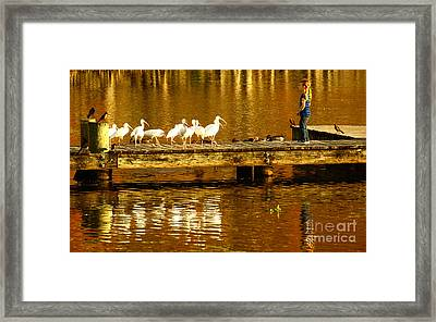 Feed Us Framed Print by Marvin Spates