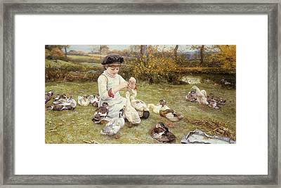 Feeding Ducks Framed Print by Edward Killingworth Johnson