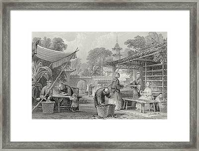 Feeding Silkworms And Sorting Cocoons Framed Print by Thomas Allom