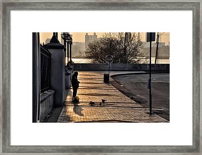 Feeding The Birds At Dawn Framed Print by Bill Cannon