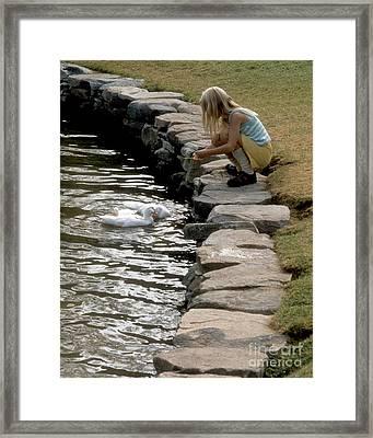 Feeding The Ducks Framed Print by ELDavis Photography
