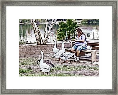 Feeding The Geese Framed Print by Photographic Art by Russel Ray Photos