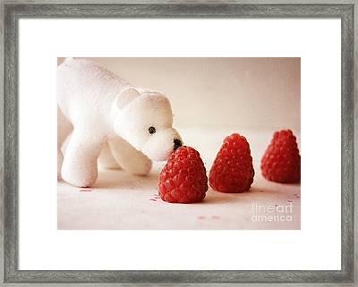 Feeding The Polar Bear I Framed Print
