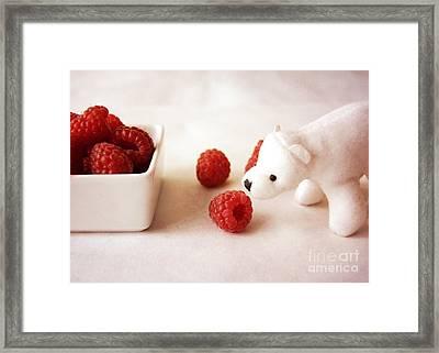 Feeding The Polar Bear Iv Framed Print