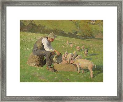 Feeding Time Framed Print by Harold Harvey
