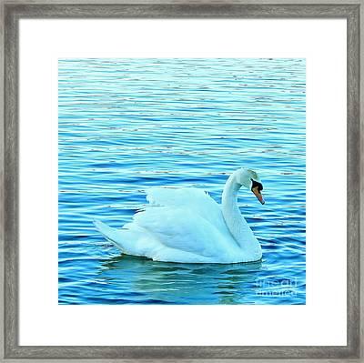 Feeling Blue Framed Print by Katy Mei