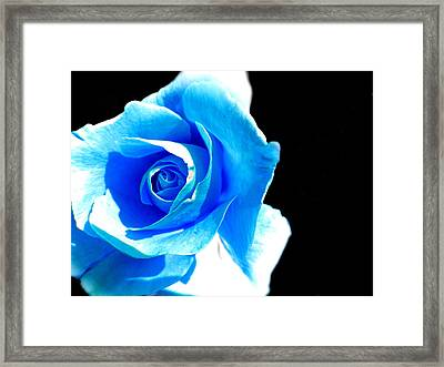 Feeling Blue Framed Print by Marianna Mills