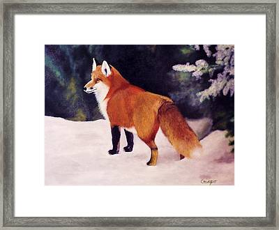 Feeling Foxy Framed Print
