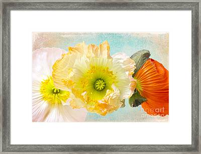 Feeling Of Summer Framed Print by Angela Doelling AD DESIGN Photo and PhotoArt