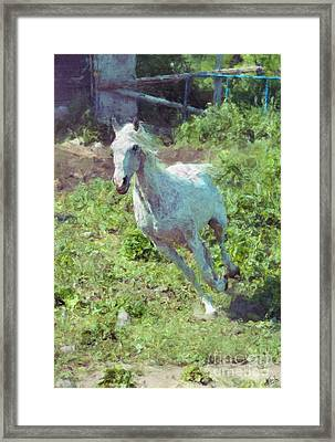 Feeling The Wind Framed Print by Skye Ryan-Evans