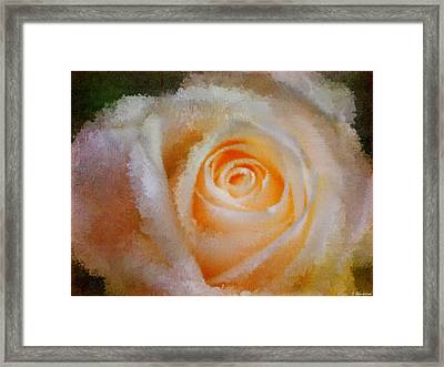 Feelings Of Flowers - Image Art Framed Print by Jordan Blackstone