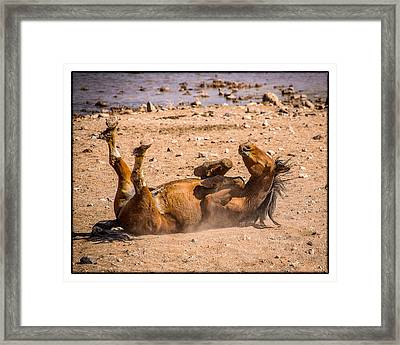 Feels So Good Framed Print by Janis Knight
