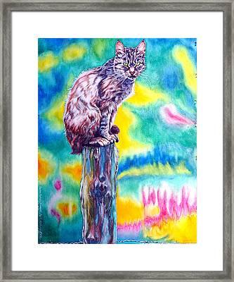 Felix Framed Print
