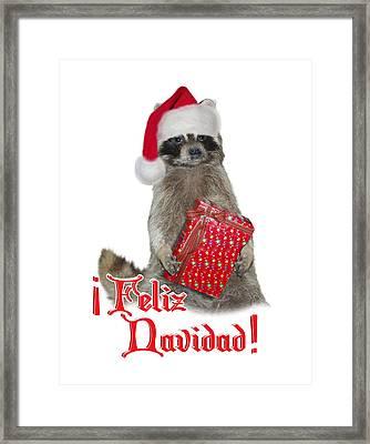 Feliz Navidad - Raccoon Framed Print by Gravityx9  Designs