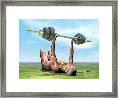 Female Musculature Exercising Framed Print by Elena Duvernay