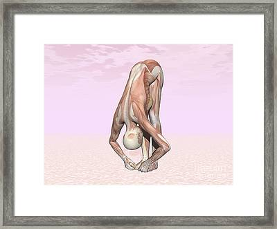 Female Musculature Performing Big Toes Framed Print by Elena Duvernay