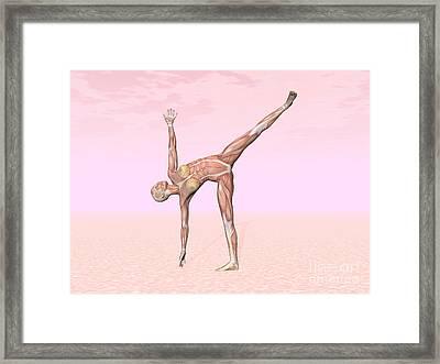 Female Musculature Performing Half Moon Framed Print by Elena Duvernay