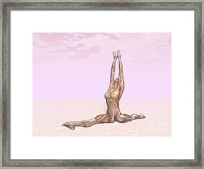 Female Musculature Performing Monkey Framed Print by Elena Duvernay