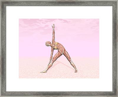 Female Musculature Performing Triangle Framed Print by Elena Duvernay