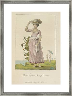 Female Quadroon Framed Print by British Library