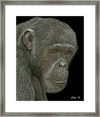 Female Reflections Framed Print by Larry Linton