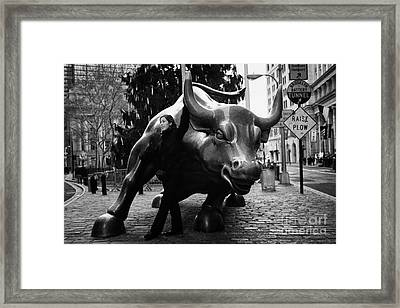 female tourist at Charging Bull statue bronze sculpture bowling green park new york city Framed Print