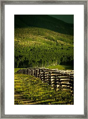 Fence And Shadow Framed Print