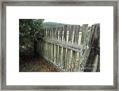 Fence At The Farm Framed Print by Graham Foulkes