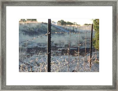 Framed Print featuring the photograph Fence by David S Reynolds