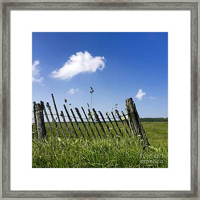 Fence In A Pasture Framed Print by Bernard Jaubert