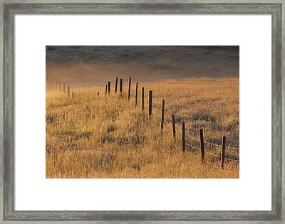 Fence In Pasture Near Cochrane Framed Print by Darwin Wiggett