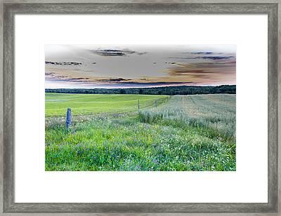 Fence Line Dawn Framed Print