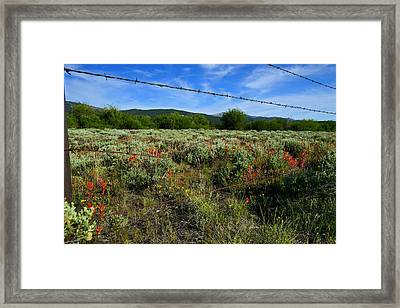 Fence Mending Framed Print by Jeremy Rhoades