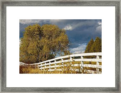 Fence Framed Print by Michele Wright