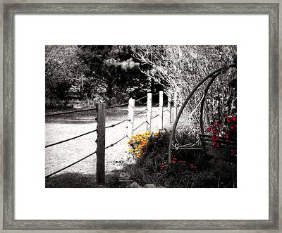 Fence Near The Garden Framed Print