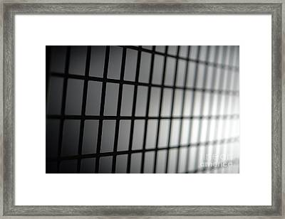 Fence Framed Print by Olivier Le Queinec