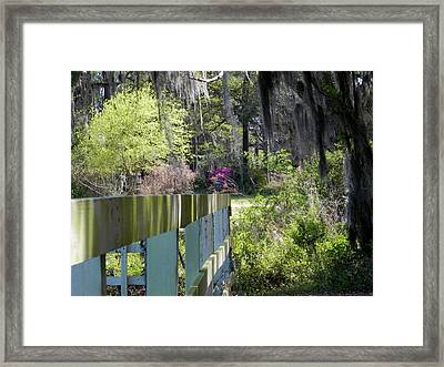 Fence Points The Way Framed Print by Patricia Greer