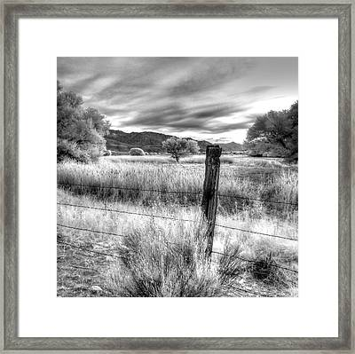 Fence Post In The Meadow Framed Print