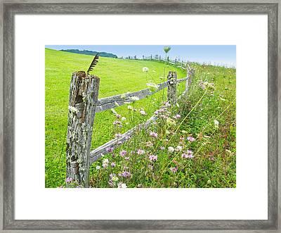 Fence Post Framed Print by Melinda Fawver