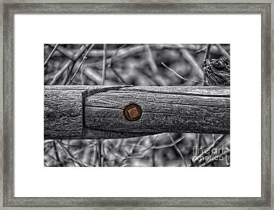 Fence Rail With Rusty Bolt Framed Print by Thomas Woolworth