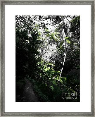 Framed Print featuring the photograph Fenced Green by Rushan Ruzaick