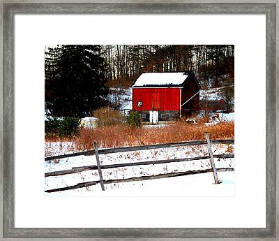 Fenced In  Framed Print by Mary Beth Landis