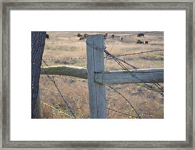 Fenced Framed Print by Kelly Kitchens