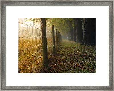 Fenced Off Framed Print by Chris Fletcher