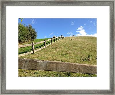 Fenced Pasture Framed Print by Ron Torborg
