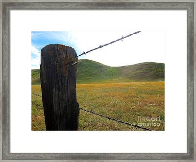 Fencepost On The 58 Framed Print